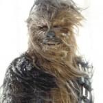 Chewie in Hoth, curtindo uma neve na juba