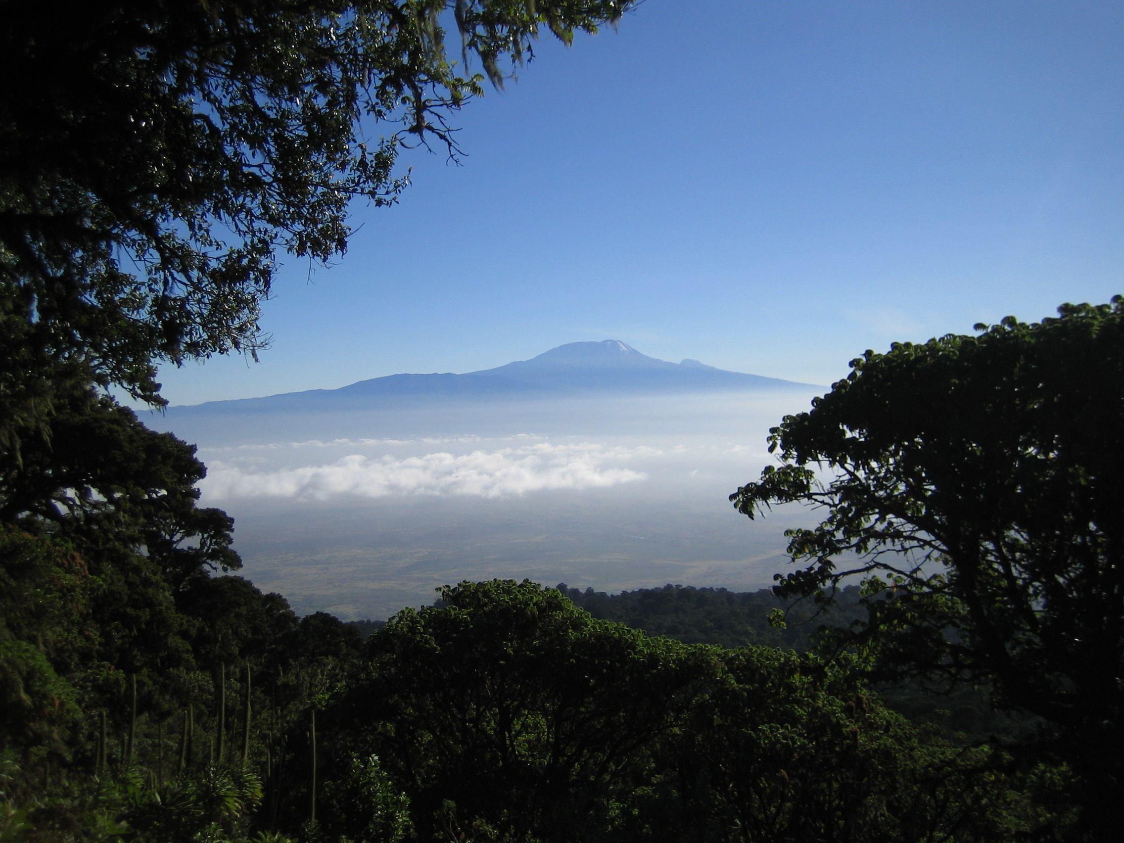 O monte Kilimanjaro é o ponto mais alto da África, com uma altitude de 5.891,8m